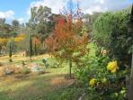 Autumn at Dusk