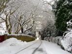 Snowy drive!