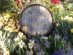 Vineyards to explore in Murphys