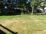 Large back yard for entertaining