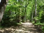 The surroundings offer many picturesque spots for extensive hikes and walking
