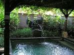 Privet garden+dip pool