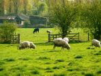 Countryside walks on your doorstep