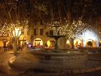 Place aux Herbes at night