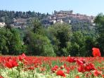 Tourrettes hilltop vilage nearby