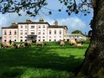 Local Attraction-Longueville House-Afternoon Tea