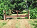 Entrada y la cerca natural de amapola