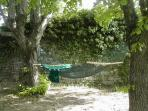 Relax in the quiet of the secret garden