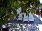 Relaxation area with sun loungers among lemon trees and oranges.