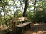 Benches along our tracks  and the fitness trail to rest
