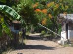 Entrée gardée du parc des baobabs