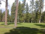 view of golf course from back yard