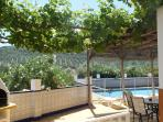 We Have A Large Grapevine You Can Help Your Self To In The Summer Months