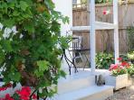 Rabbit's verandah