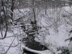 Beautiful creek running along our property