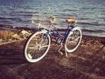 Free Blue bikes in the village for all our guests, ride the 2 blocks to the lake!