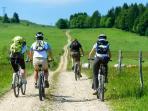 Ballades vélo pleine nature. Belles randonnées surprenantes.