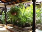 Traditional Spanish Colonial indoor garden.
