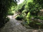 Botanical Gardens, 5 min by car, 10 min by bike