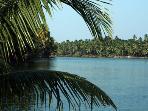 Backwaters near Coconut Island, Thrissur.