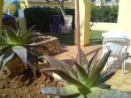 terraza -jardin
