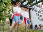 manilva grapes festival