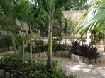 Sourrended by Mayan Garden