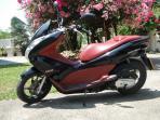 Honda PCX 150 Rental Motorbikes