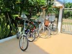 3 adults bike, 2 kid bike
