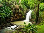 Anadale Waterfalls