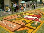 Itri's Flower Festival in June