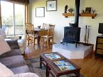 Living with TV and Wood Stove