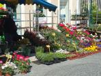 Market day St Jean d'Angely