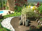 Designer's landscape with many exotic flowers