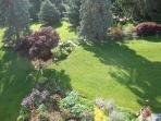 Ariel view of the back lawn.
