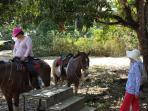 Enjoy horseback riding nearby