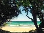Spiaggia Pineta del Gelsomineto