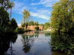 l'étang du Domaine de Ferchaud