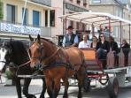 Ballade a cheval  renseignements  Office du Tourisme