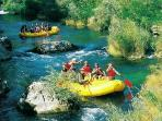 Rafting on Cetina river (30min by car)