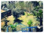 lush garden..