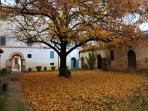 The main courtyard in autumn