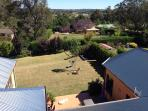 Back yard - Aerial view. Some lovely distant views, some visible from inside the home.