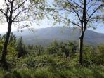 Il Monte Morrone, la vista dal bb