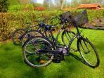 les vélos du Domaine de Ferchaud pour vos ballades