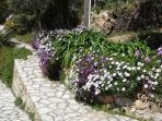 garden casa antica