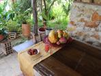 Comedor Exterior | Casa de Anny
