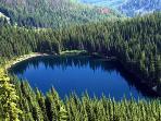 Stevens Lake  5 miles