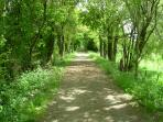 Voie Verte - disused railway line converted into cycle way