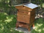 Woodend Beehive